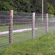 Round Fencing Post